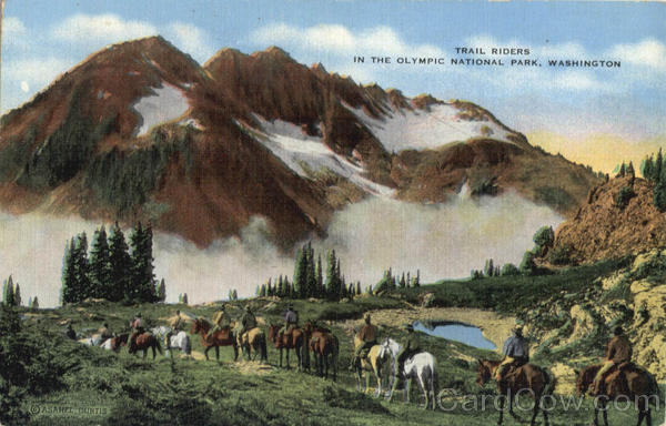 Trail Riders In The Olympic National Park Scenic Washington