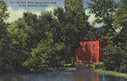 The Old Mill Alley Spring State Park Postcard
