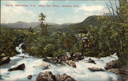 White Mountains; Wild Cat River