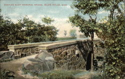 Charles Eliot Memorial Bridge