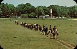 Old Trails Stables Postcard