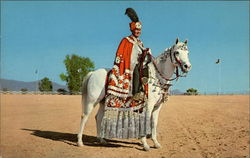 Arabian Horse and Costumed Rider