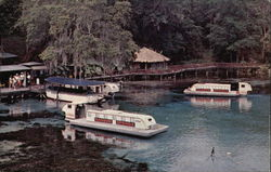 Rainbow River Cruise and Rainbow Trail Postcard