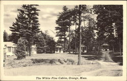 View of The White Pines Cabins Postcard