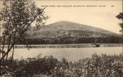 Moose Pond and Pleasant Mountain