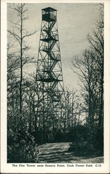 The Fire Tower Near Seneca Point, Cook Forest Park
