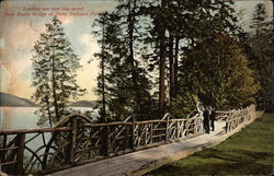 Looking out over the Sound from Rustic Bridge at Point Defiance Park