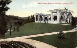 The Pergola, Busch's Gardens