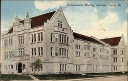 Gymnasium, Brradley Institute