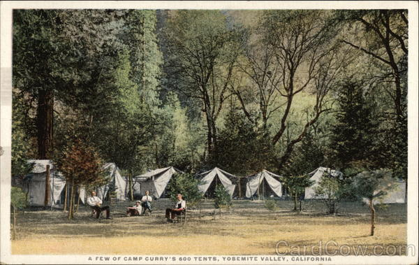 A few of Camp Curry's 600 tents Yosemite Valley California