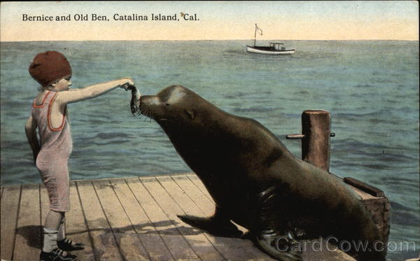Bernice and Old Ben Santa Catalina Island California