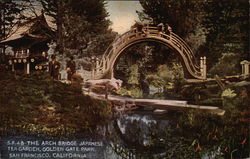 The Arch Bridge
