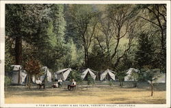A few of Camp Curry's 600 tents