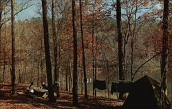 Brushy Lake Campsite, Bankhead National Forest