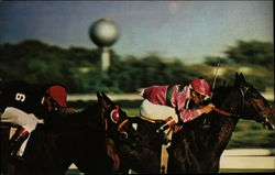 "Horse Racing at The Aqueduct - The ""Big A"""