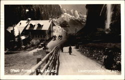 Brook Forest in the Rockies & Lauterbrunnen in the Alps