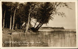Cottages of N.L. Gage on Manistique Lake