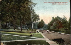 Scottland Road and Montrose Ave Postcard