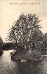 The island, Soucook River, Loudon, N.H