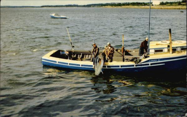 Tuna Fishing in Nova Scotia Fishing