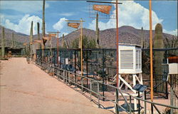 Watershed Exposition, Sonora Desert Museum