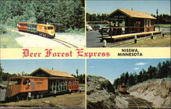 Deer Forest Express