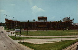 Gator Bowl Postcard