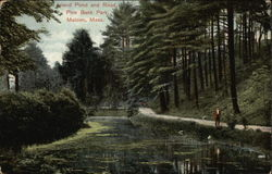 Island Pond and Road, Pine Bank Park