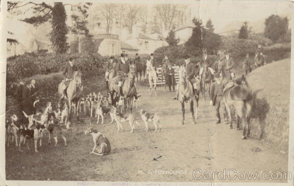 W. S. Foxhounds Charger Luxborough Events