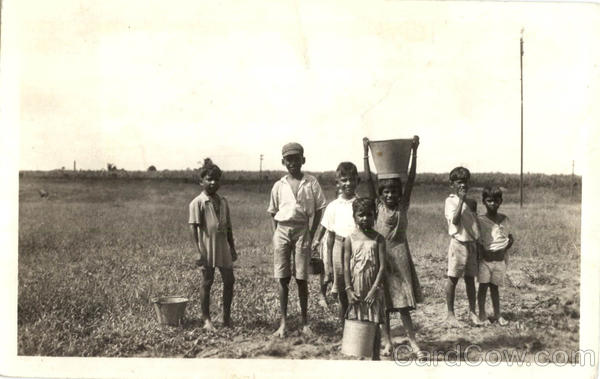 Group of Children working in Field