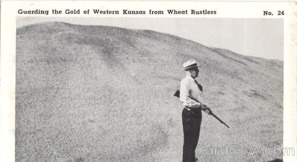 Guarding The Gold Of Western Kansas, Wheat Rustlers Scenic