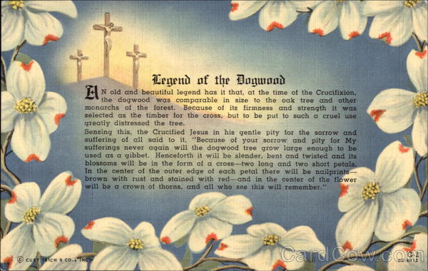 Breathtaking image within legend of the dogwood tree printable
