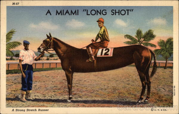 A Miami Long Shot Comic, Funny Horse Racing
