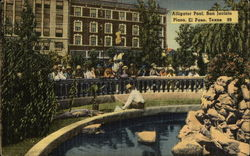 Alligator Pool, San Jacinto Plaza