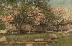 Cabins in the Orchard, Banner Lodge