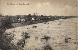 Oroville Levee Postcard