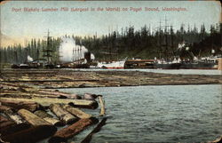Port Blakely Lumber Mill