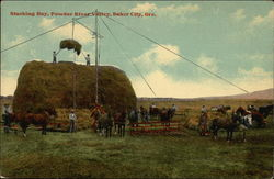 Stacking Hay, Powder River Valley