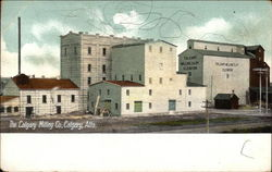 The Calgary Milling Co