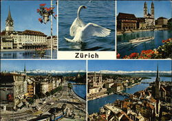 Various Views of City Postcard