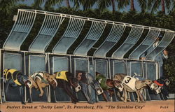 "Perfect Break at ""Derby Lane,"" St. Petersburg, Fla. ""The Sunshine City"""