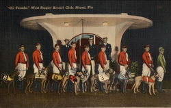 On Parade, West Flagler Kennel Club