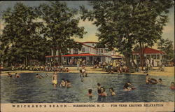 Whichard's Beach, For Year Around Relaxation Postcard
