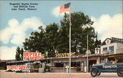 Dogpatch Reptile Garden and Hillbilly Farm Postcard