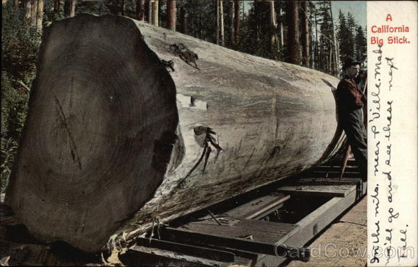A California Big Stick Logging