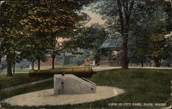 View in City Park Postcard