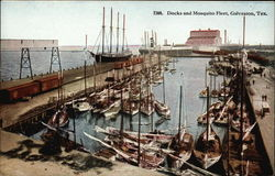 Docks and Mosquito Fleet