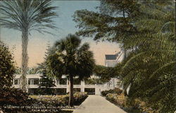 A Glimpse of the Gardens, Royal Poinciana Hotel Postcard