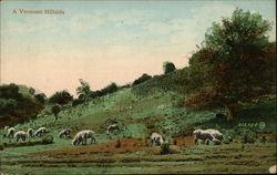 A Vermont Hillside