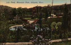 Lily Pond, Mountain Park